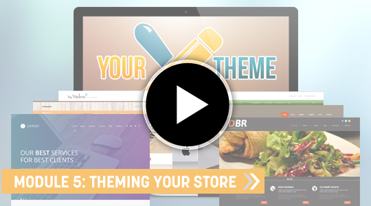 Module 5 Theming and designing your Ecommerce website