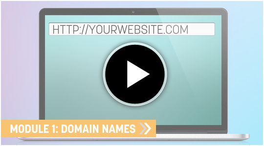 Domain Name E-commerce Video training course and community
